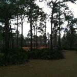Camping site (lugar en donde acampamos)